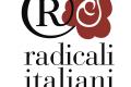 Formigoni condannato a risarcire i radicali (per la 2° volta)